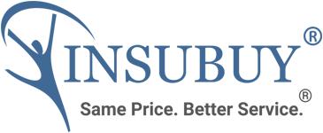 Insubuy, Inc.